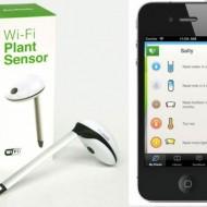 Koubachi-Wireless-Plant-Sensor